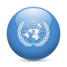 自動運転 国連